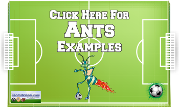 ants Soccer Banners