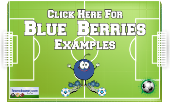 blueberries Soccer Banners