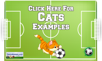 cats Soccer Banners