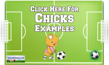 chicks Soccer Banners