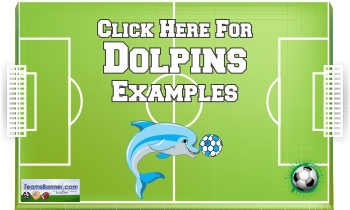 dolphins Soccer Banners