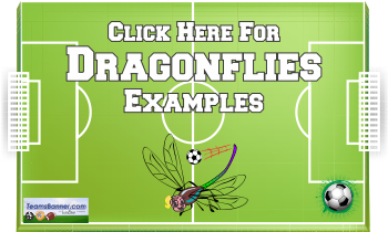 dragonflies Soccer Banners