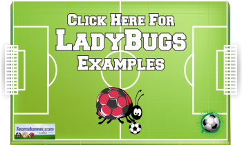 ladybugs Soccer Banners