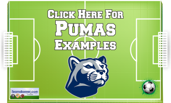 pumas Soccer Banners