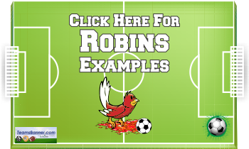 robins Soccer Banners