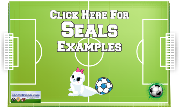 seals Soccer Banners