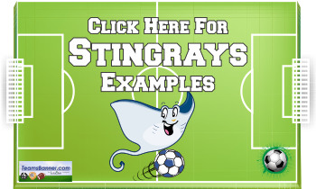 stingrays Soccer Banners