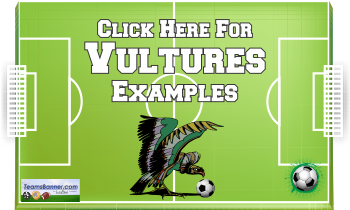 vulturs Soccer Banners