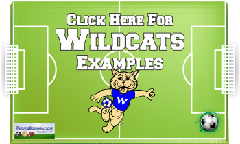 wildcats Soccer Banners