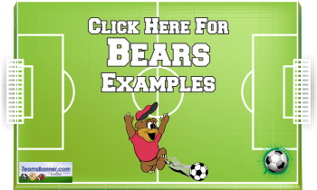 bears Soccer Banners
