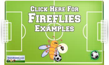 fireflies Soccer Banners
